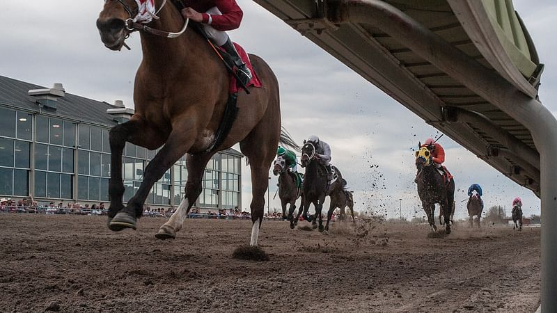 I got the horse right here... and if the weather's clear at Will Rogers Downs and Fonner Park then you should go with Garrity's picks