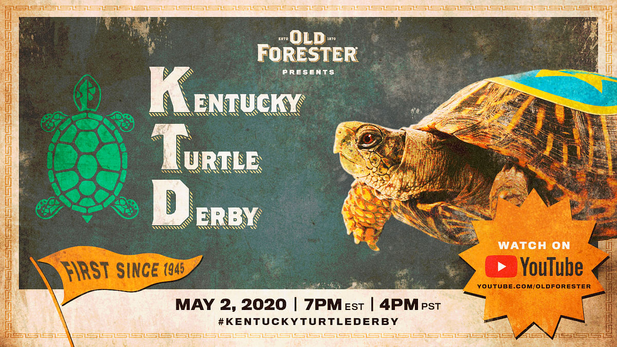 An image provided by Brown-Forman shows a promotion for the Kentucky Turtle Derby, to be shown Saturday at 7 p.m. on YouTube. The sounds may be familiar for Kentucky Derby fans: Triple Crown announcer Larry Collmus is calling the race and race bugler Steve Buttleman will serenade viewers prior to the turtles taking off.