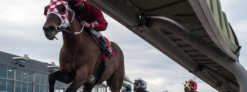 Under-rail cam of horse racing at Fonner Park Racing