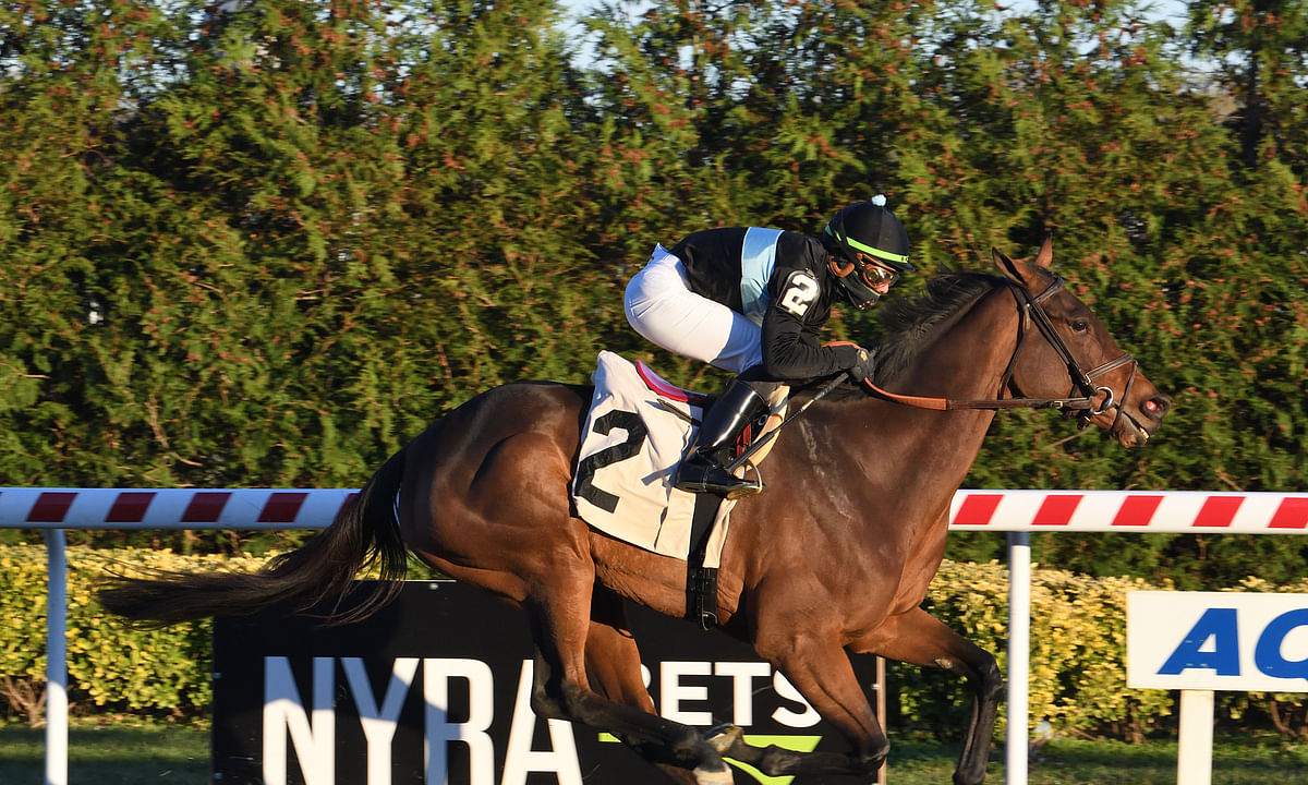 Garrity's Saturday Stakes: Racing picks at Churchill Downs, Santa Anita and Golden Gate Fields