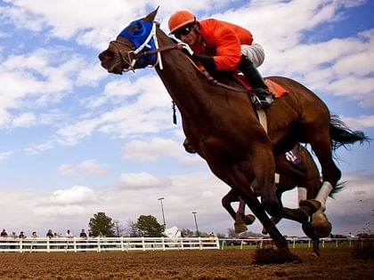 Wednesday Will Rogers Downs picks for 6 of the 10 races, including multi-race wagers, courtesy of Garrity