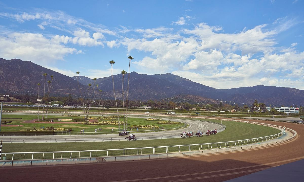 SmartCap and RT pick the 1st race at Santa Anita Park on Friday
