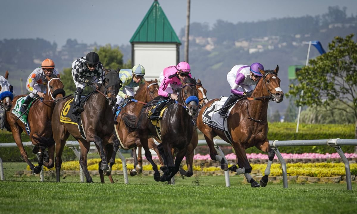 Garrity welcomes back new entries and has horse racing picks at Golden Gate Fields, Charles Town, and Gulfstream Park