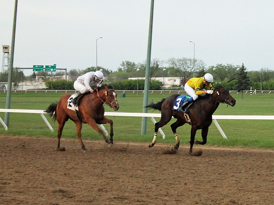 BI's Disabled Jockey Fund Charity Handicapping Contest: Monday, RT picks the Assiniboia Downs 6th, Garrity picks the Tampa Bay Downs 8th