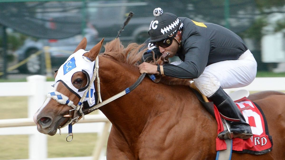 SmartCap and RT head to Will Rogers Downs to evaluate and pick the 1st race and a trifecta