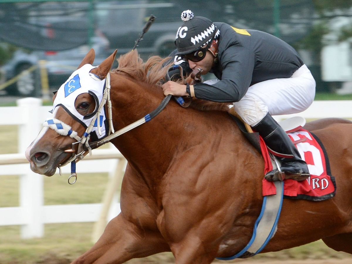 SmartCap and RT pick Tuesday's $55K Cherokee Nation Classic Cup Stakes, the  9th at Will Rogers Downs