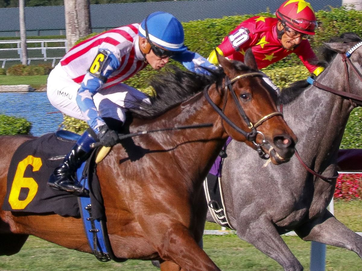 A Mother's Day present from Garrity: Four plays in three horse races at Gulfstream Park
