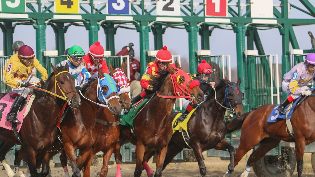 Tuesday Horse Racing: RT looks back on 2020 and forward to today's 7th-9th at Parx – plus 2 at Mahoning Valley
