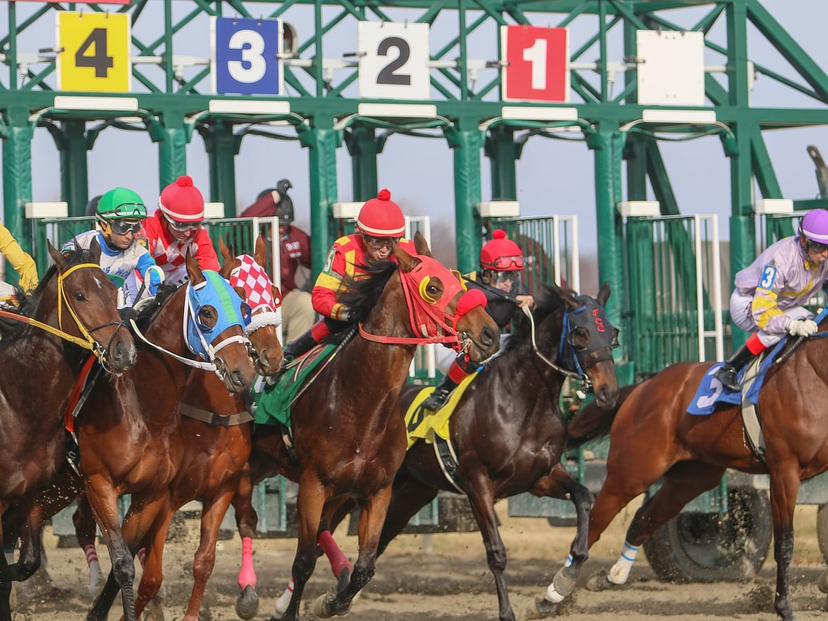 Monday at the track: Garrity picks races at Indiana Grand, Delaware Park, Parx Racing, and Lone Star Park