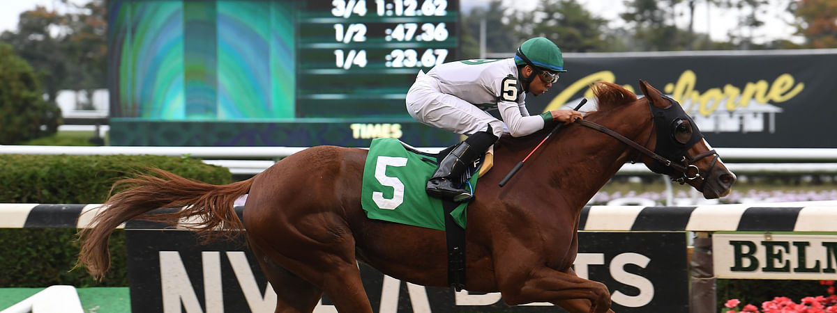 Danny California, shown here racing at Belmont in October, 2019, is RT's pick to win the 7th at Belmont
