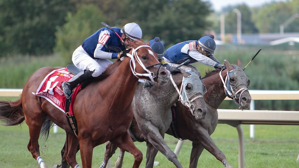 Wednesday Horse Racing: RT's Tips and Trends with races at Parx, Tampa Bay Downs and Mahoning Valley