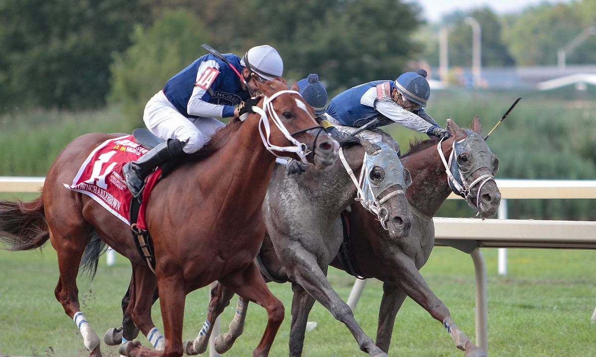 Monday at Parx Racing: Garrity picks three races on a hot track