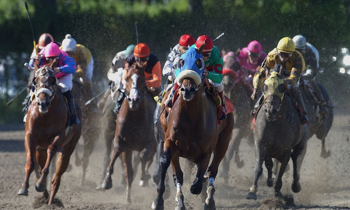 Thursday at the track: Garrity picks 3 races, including the $125,000 Critical Eye Stakes at Belmont Park