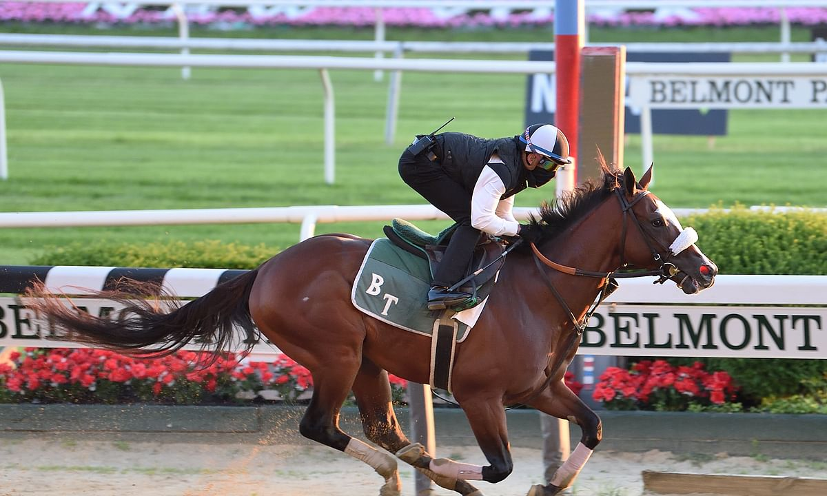 The Belmont Stakes: Garrity analyzes the 10-horse field and explains why Tiz the Law is going to win