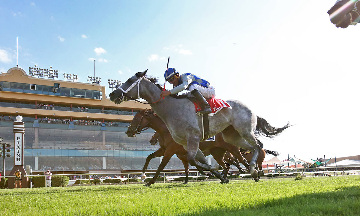 PDJFund Charity Handicapping Contest: Tuesday, RT and Garrity pick races at Lone Star Park