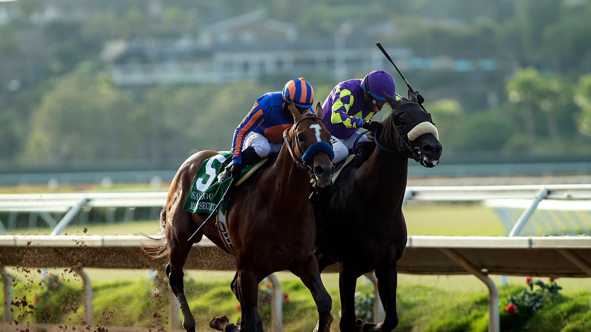 Photo finish: Maximum Security wins by a nose at Del Mar in return