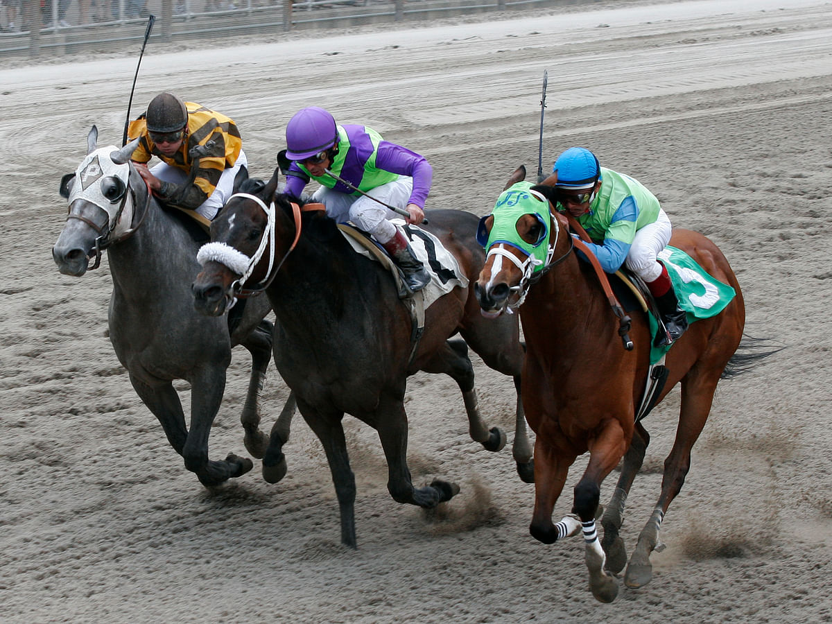 Thursday at the track: Garrity has four plays picked at Belmont Park and Indiana Grand