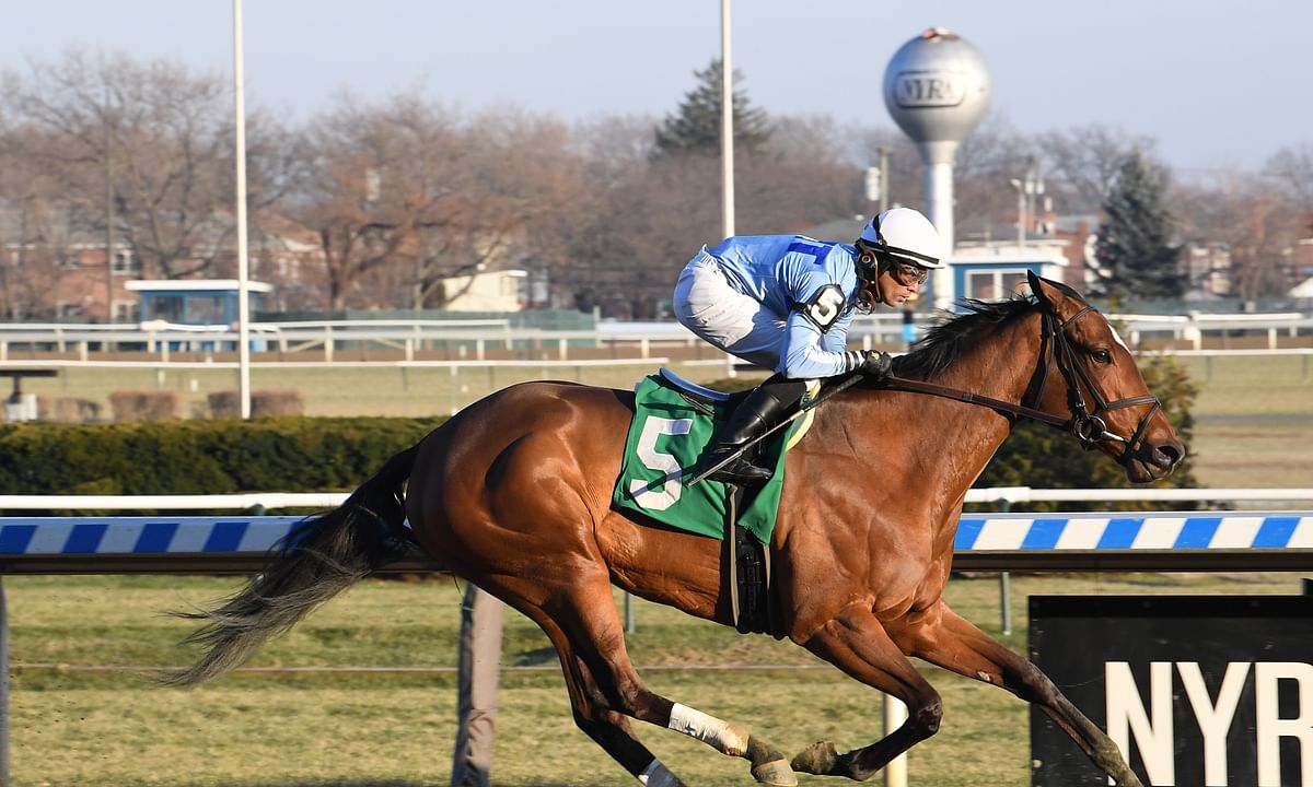 Newly Minted, shown here racing at Aqueduct, is Garrity's pick to win today's $85,000 Union Avenue Stakes at Saratoga