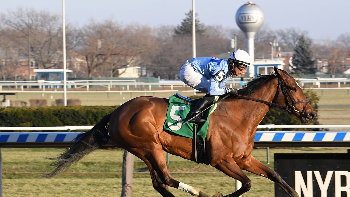 Thursday at the track: Garrity picks the races at Saratoga, including the $85,000 Union Avenue Stakes