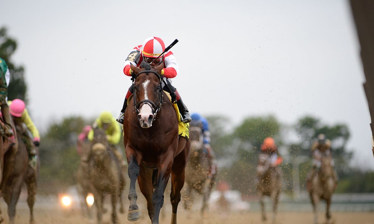Complexity, winning the Champagne Stakes in 2018, is Garrity's pick for the Forego Stakes.