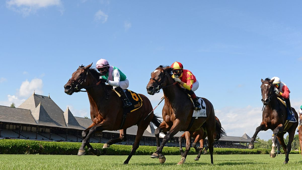Garrity's Saturday Stakes Picks: Noble Damsel at Belmont, Ack Ack at Churchill & Rodeo Drive, American Pharoah and John Henry at Santa Anita