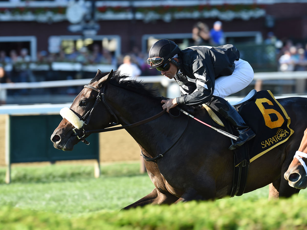 Thursday at the track: Garrity picks the horses at Churchill Downs, Woodbine, and Belmont