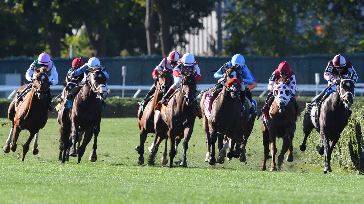 Garrity's Sunday Stakes picks Single races at Belmont, Keeneland and Santa Anita and three at Woodbine – all are on turf