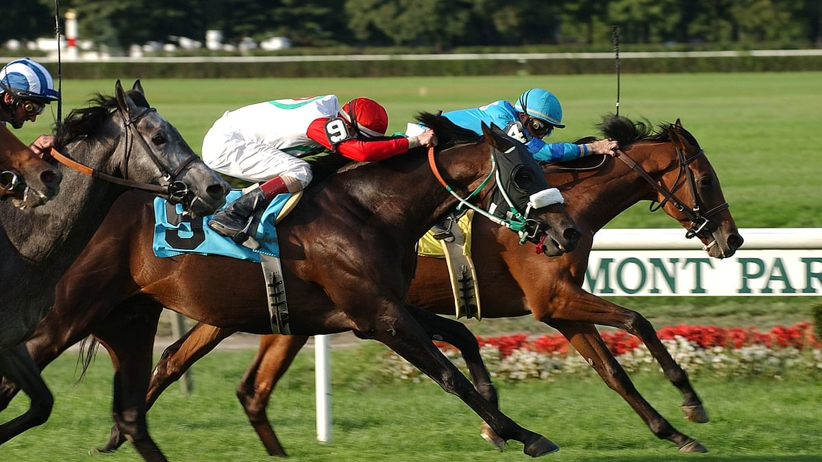Garrity's Friday Dad's Hat Happy Hour Handicapping picks races at Belmont, Churchill Downs and Los Alamitos