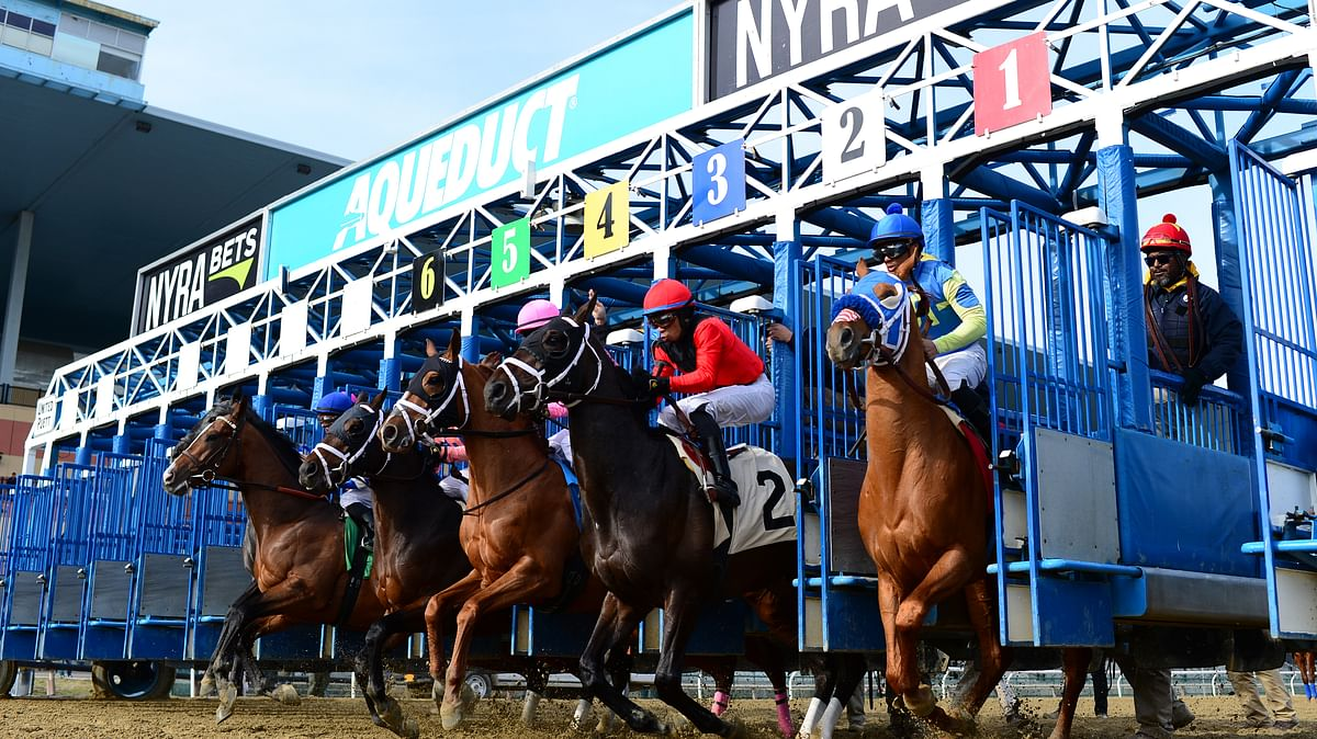 Bet Horse Racing: Garrity picks the 5th, 7th and 9th from Aqueduct, including a MSW for 2-year-olds