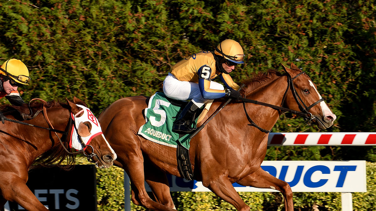 Garrity's Saturday Stakes picks for Aqueduct, Churchill Downs & Del Mar, with the Desi Arnaz, Artie Schiller