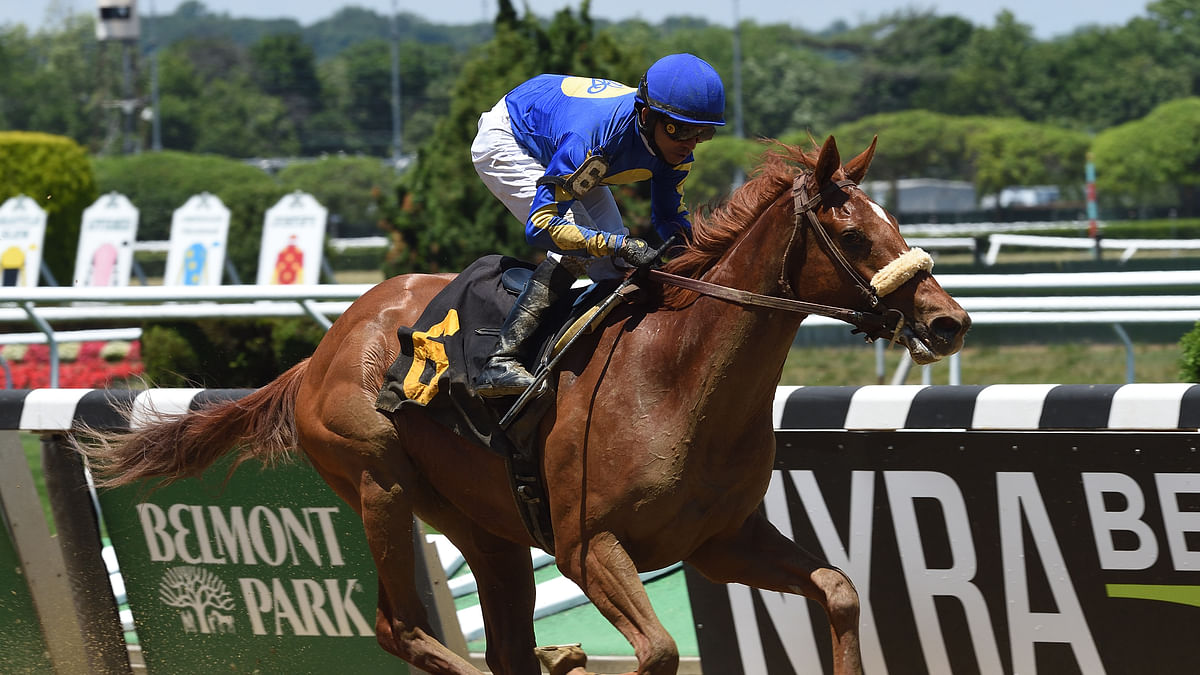 Sunday at Aqueduct: RT has picks and analysis for races 2-8 including the NY Stallion Stakes and Series