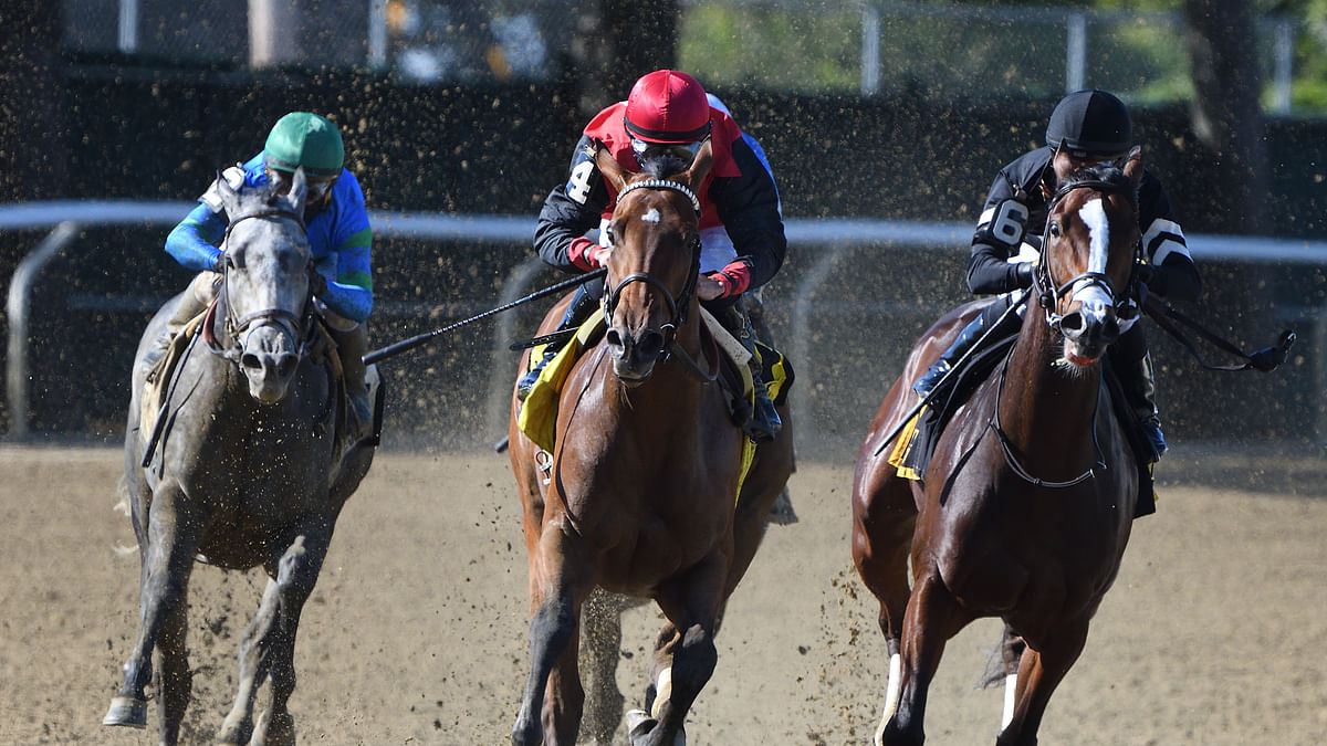 Garrity's Saturday Stakes picks are at Gulfstream Park, Oaklawn and Santa Anita with two Kentucky Derby preps