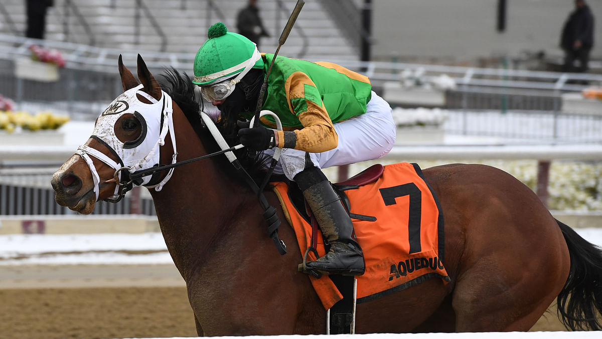 Garrity's Saturday Stakes picks a six-pack of races at Aqueduct, Gulfstream Park, Fair Grounds and Santa Anita