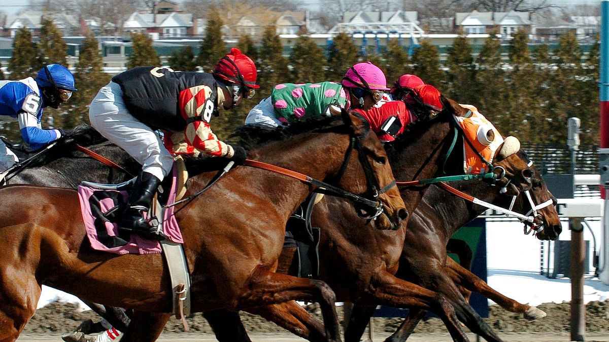 Thursday 5-pack of race picks from Garrity include Aqueduct, Gulfstream Park, Delta Downs, and Fair Grounds
