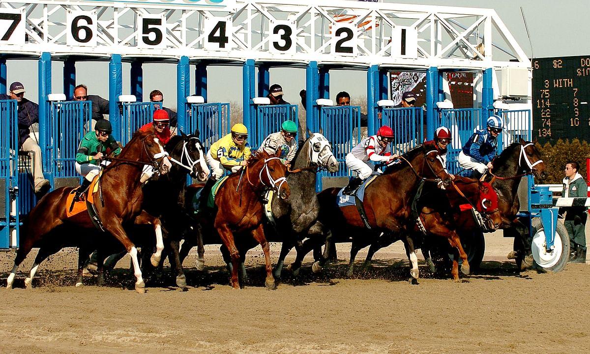 Horse Racing at Aqueduct