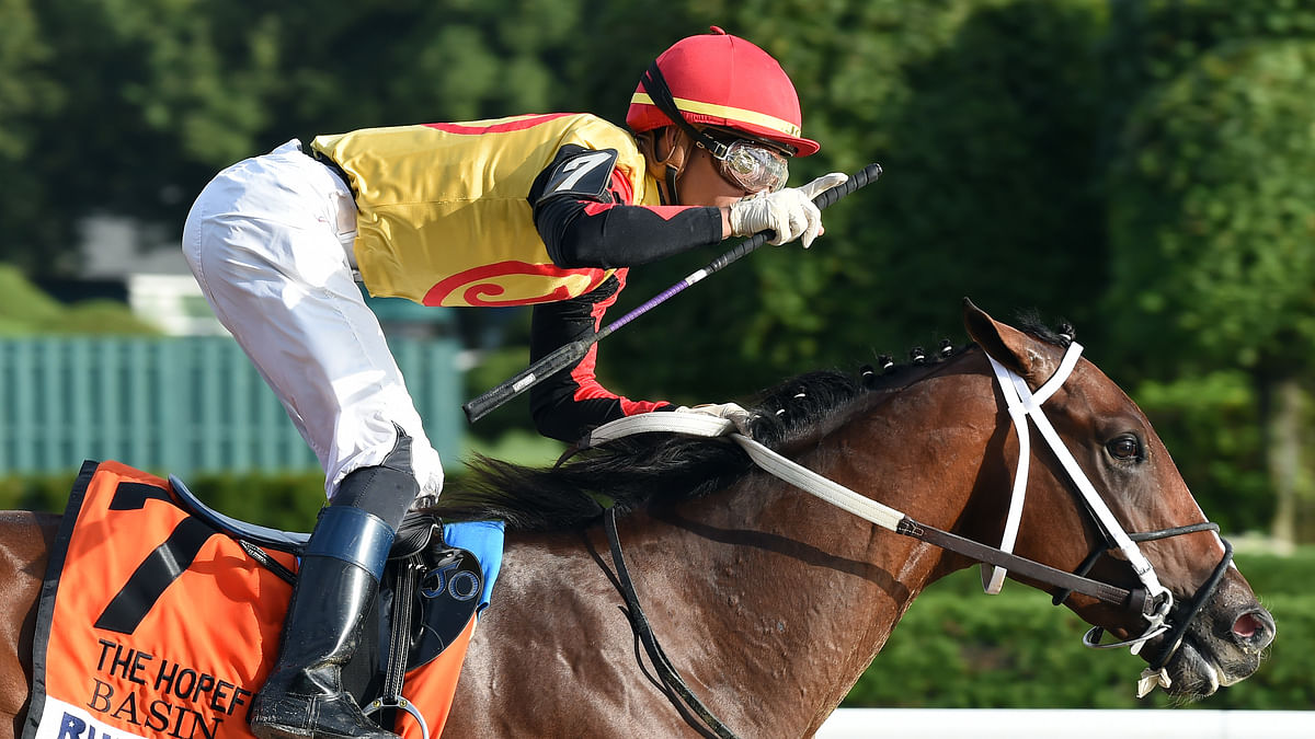 Horse Racing: God's Tipster picks 4 Saturday races at Gulfstream Park – looks to Collaborate in Florida Derby