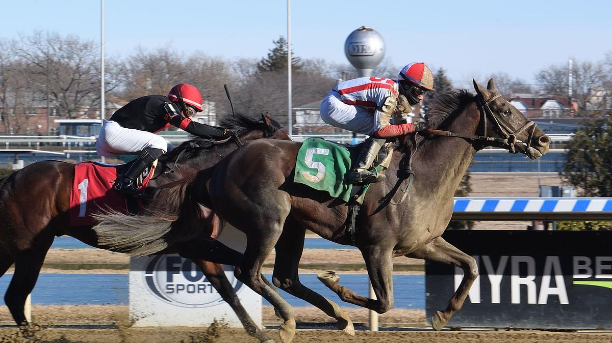 God's Tipster picks 8 Saturday races at Aqueduct, Tampa Bay Downs and Santa Anita
