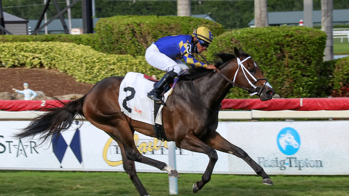 Saturday Horse Racing: After 2 winners Friday, God's Tipster picks th 4th, 6th and 7th at Gulfstream Park
