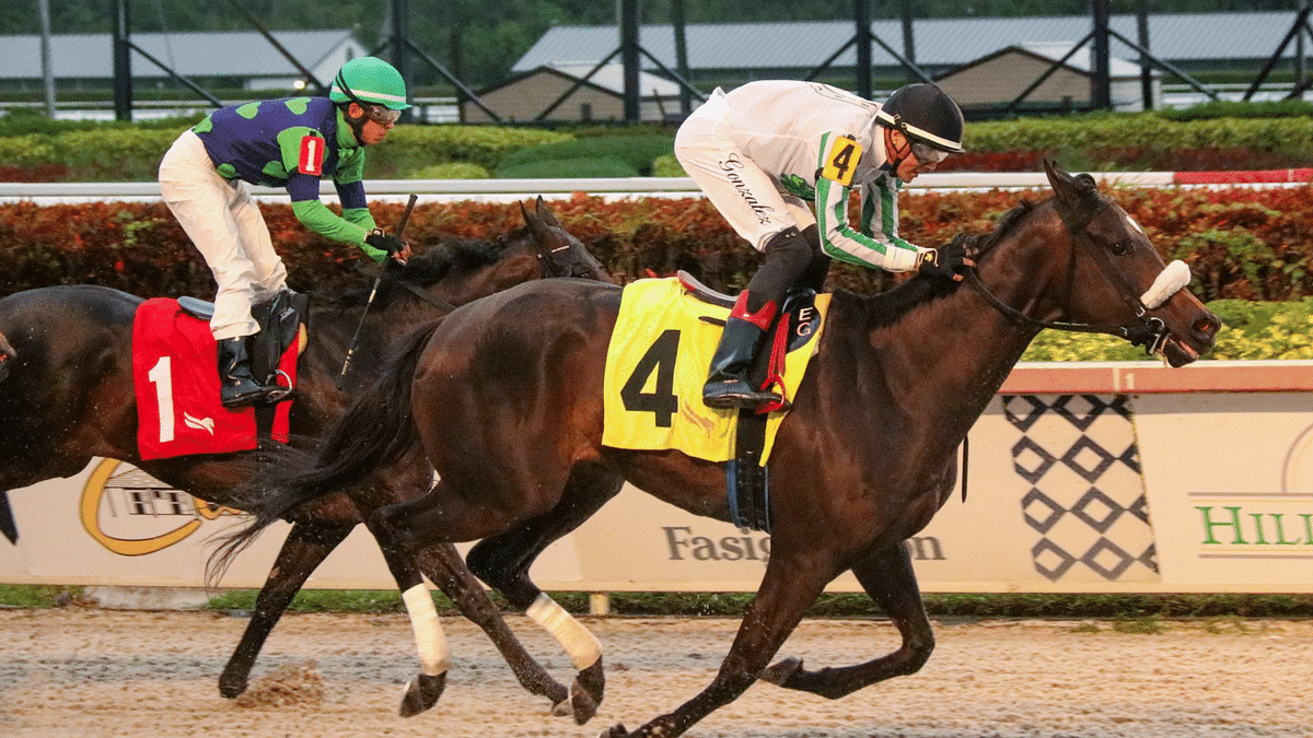 Thursday at the Track: After a bad beat at Keeneland, God's Tipster returns to Gulfstream Park for races 7 & 8