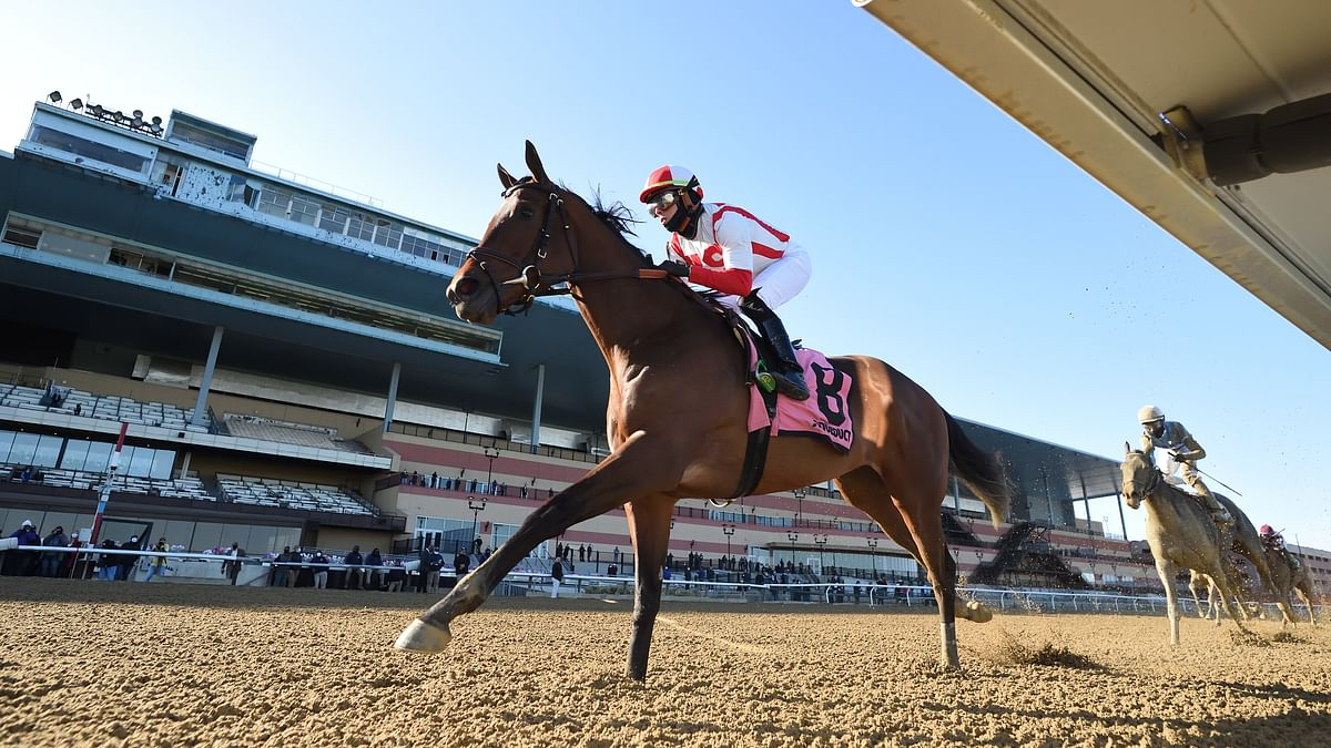 Friday Churchill Downs Stakes: Garrity picks the Kentucky Oaks, La Troienne, Eight Belles, Alysheba and more