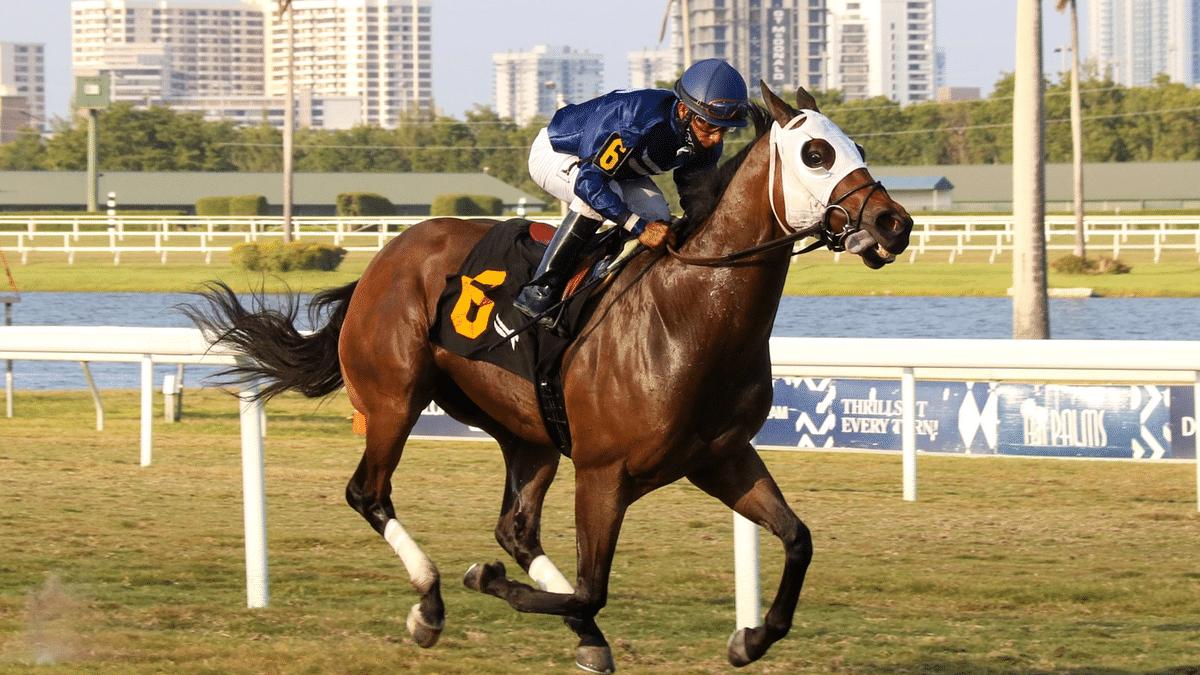 Thursday Horse Racing: God's Tipster picks two live longshots at Gulfstream, recaps Wednesday Keeneland winner