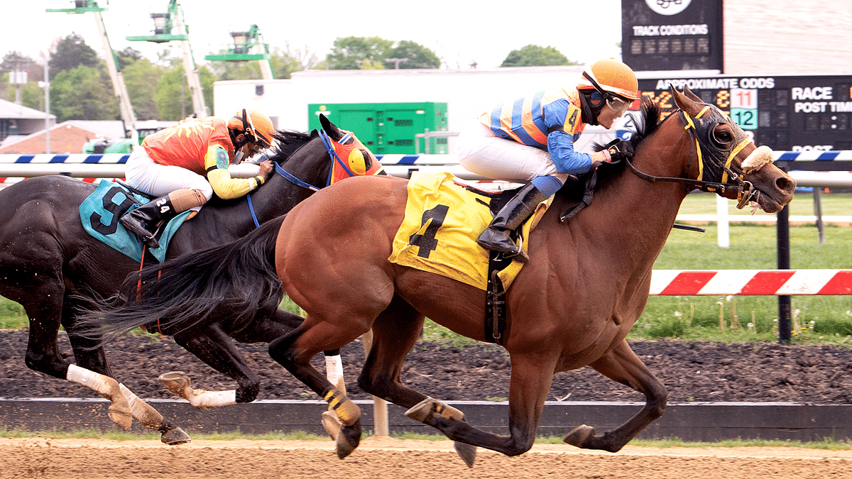 Thursday Horse Racing: Garrity picks the 2nd, 5th, and 7th races at Pimlico as he warms up for the Preakness