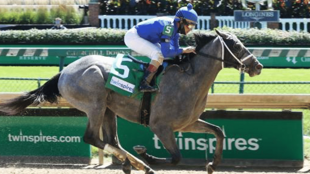 Garrity breaks down the Kentucky Derby, comments on all 20 horses, picks who will win the roses