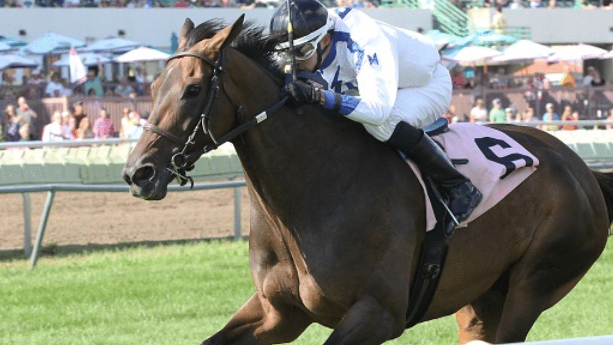 Wednesday Horse Racing: God's Tipster offers up three free picks for Canterbury Park