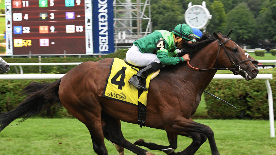 Garrity's Sunday Stakes picks Monmouth & Santa Anita, hopes a big longshot knocks out Raging Bull at Belmont