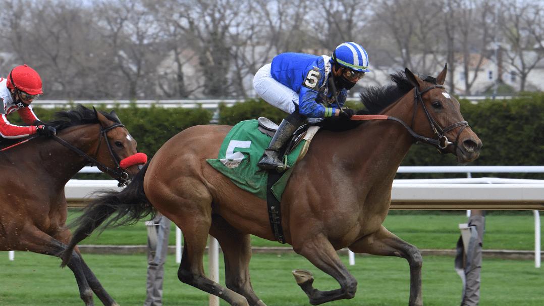 Sunday Horse Racing: After nailing the Belmont Trifecta Saturday, Garrity picks Belmont, Monmouth, Santa Anita