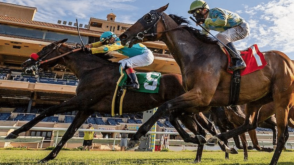 How to pick the best horse to bet on: Speed, past performance, surface, and more, all play a part