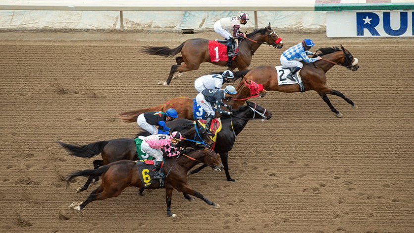 Friday Dad's Hat Happy Hour Horse Racing: Garrity picks Belmont, Churchill Downs, Santa Anita, and Monmouth