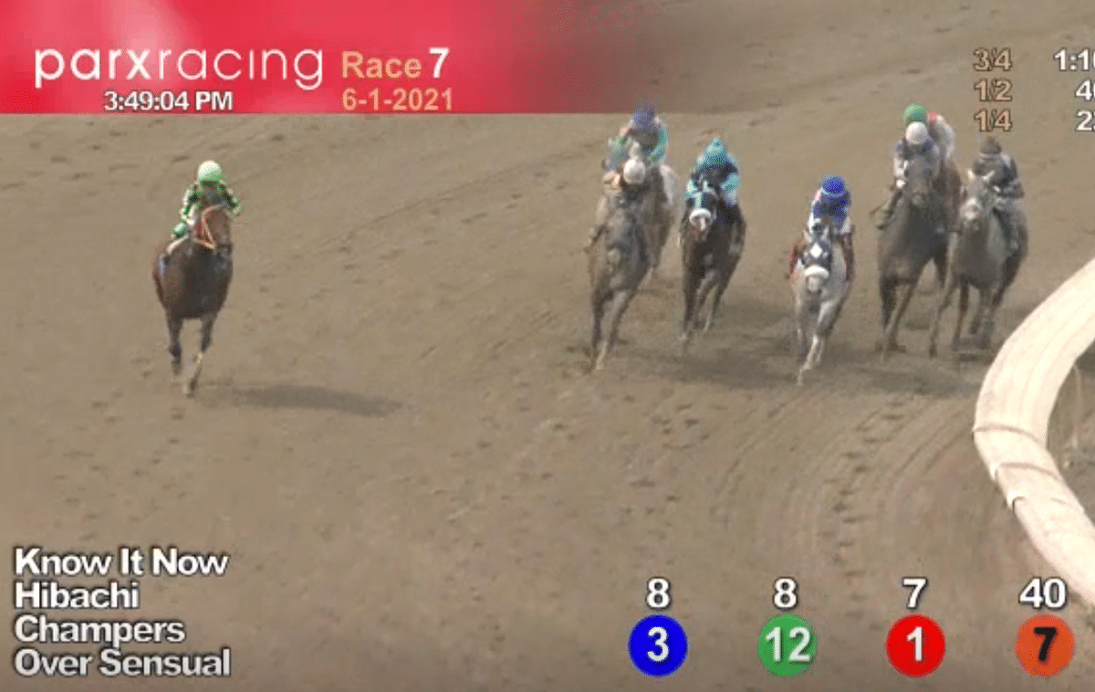 Horses to Watch June 5, 2021.