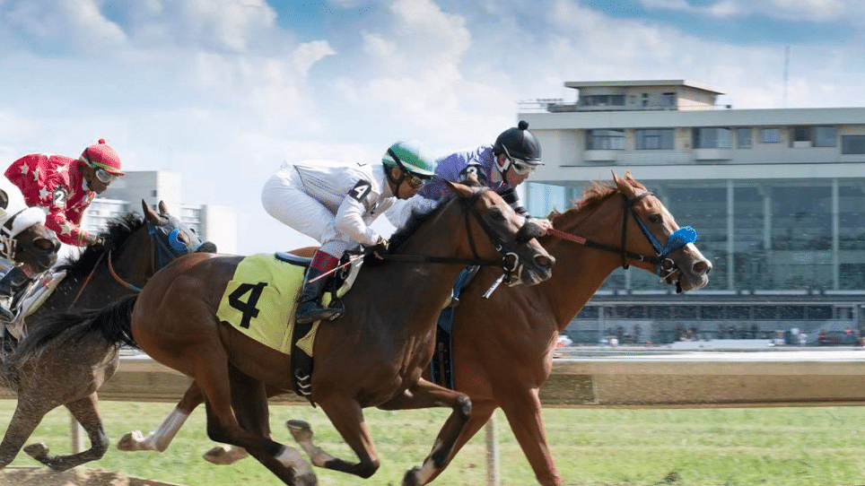 Maiden America Tuesday: Hoop Tea's Hooptie Handicapper picks 2yo races at Thistledown and Indiana Downs